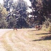 North Sandusky Campground