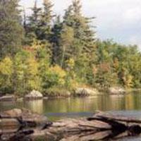 Mckinley Park Campground