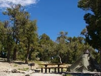 Humboldt Toiyabe Hilltop Campground