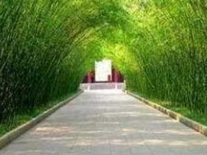 1 Day Chengdu highlights City Tour Photos