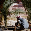 3 days JEEP AND CAMEL DESERT COMBO SAFARI