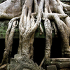 ANGKOR ADVENTURE: TREK AND BIKE  - 6 Days 5 Nights