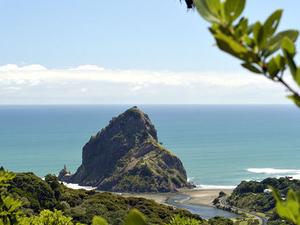 Auckland Adventure Photos