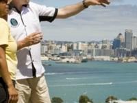 Auckland Highlights Half Day Tour