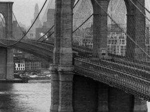 Brooklyn Bridge Bike Tour (3 Hours) Photos