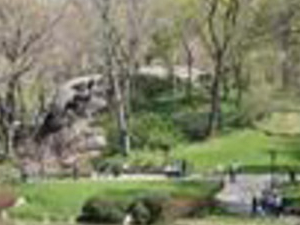 Central Park TV and Movie Sites Tour Photos