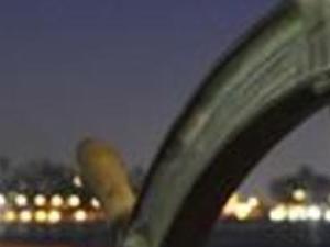 Clipper City Twilight Sails Photos