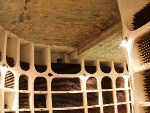 Cricova  - for wine lovers Photos
