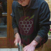 Daily cooking class - Lecce