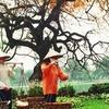 Full day exploring Hanoi