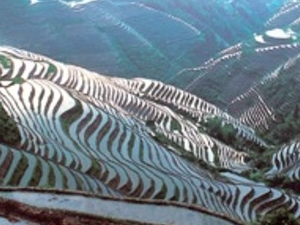 Guilin One Day Longji Rice Terrace Private Tour Photos