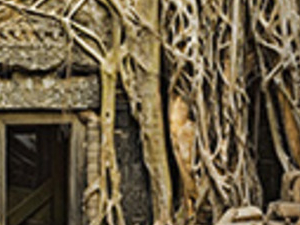 Half Day Sandstone Of Banteay Srei Photos