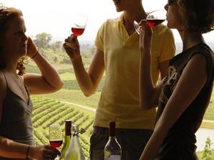 Hunter Valley Wine Tour Photos