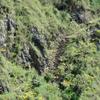 Inka Jungle Trek & Mountain Biking
