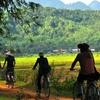 Mai Chau - Sleepy Valley