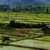 Mai Chau Valley - Mountainous Life