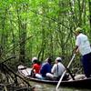 Monkey Island Excursion - Exploring World Biosphere Reverse