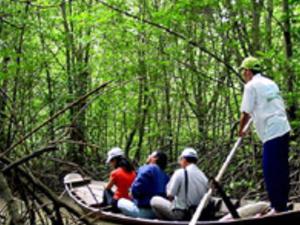 Monkey Island Excursion - Exploring World Biosphere Reverse Photos