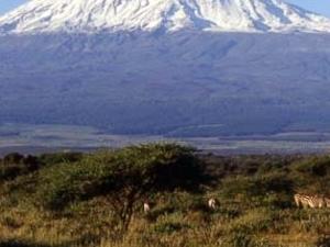 Mount Kilimanjaro Climb Machame Route 6 days Photos