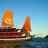 Night Cruise on The Bay - Luxury Junk (*****)
