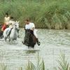 Passeggiata a cavallo nel salento