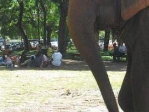 Phnom Penh Discovery Photos