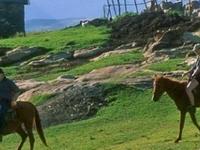 Pony Trekking Tour
