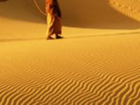 Romance of the Desert  Tour