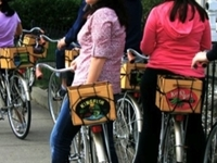 Sacramento Historic Bike Tour