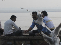 Sunrise Boat Ride In Ganga With Visit Of Ghats And Morning Rituals.