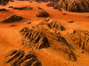 Tour to Petra and Wadi Ram 2 days Photos