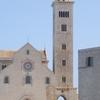 Trani Shore Excursion from Bari Port or Airport