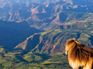 TRAVEL TO THE DESIGNATED WORLD HERITAGE SITES OF NORTHERN ETHIOPIA Photos