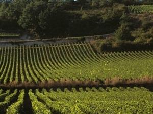 Visit Burgundy - BOF Photos