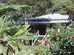 160 Acres of Rainforest