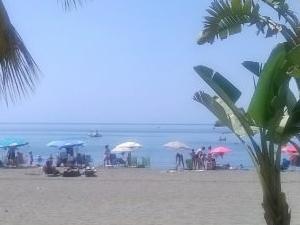 365 Days of Sun, Nature and Beach