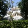 Cozy home in a lush garden