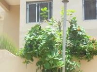 Dakar cozy stay and sunshine