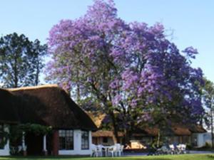 Drakensberg Mountains affordable
