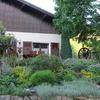 Gardening and Organic cuisine