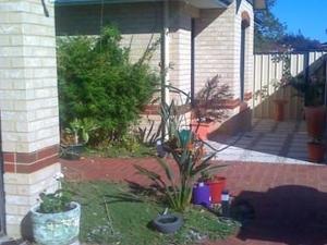 Homestay Fremantle - Jamaican style