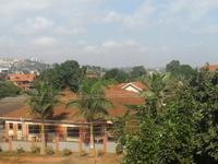 Kampala Tree House