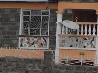 lovely family in kenya
