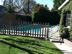 Loves socialising Granada Hills