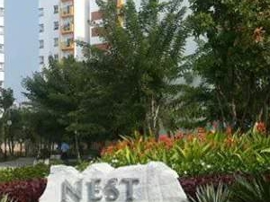 Nice Apartment in Da Nang City