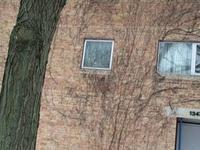 Quiet Comfy University Neighborhood