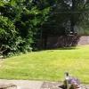 Quiet cottage Flat with Garden.