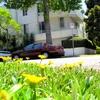 Short Term Housing for Rent