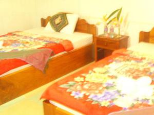 Angkor Wonder Hostel