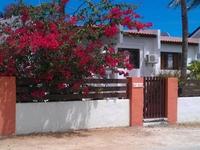 Aruba Salina Palmas